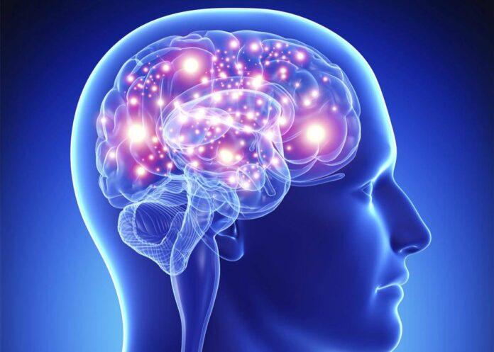 Мозъкът и как да го стимулираме
