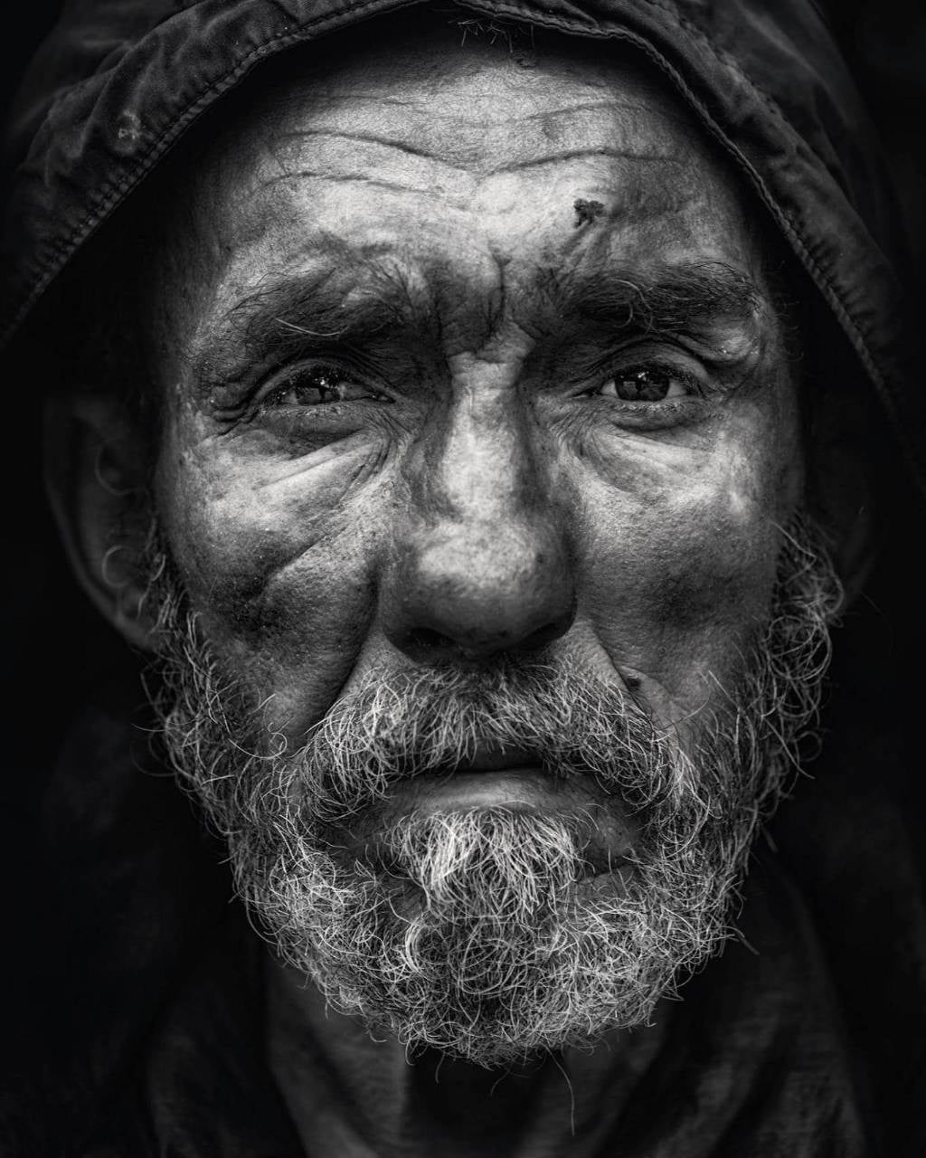 © Николай Велев