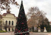 Прасета в Пловдив пред Общината няма да има