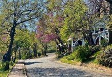 Водата прави борбата на Бунарджика в Пловдив