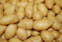 Картофи картофите